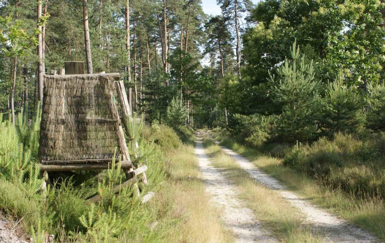 territoire de chasse a vendre en sologne