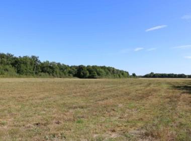 vente-propriete-chasse-sologne-est-157-hectares