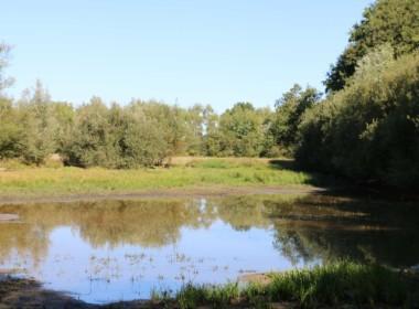 vente-propriete-chasse-sologne-est-157-hectares-4