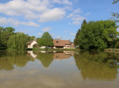 Vente_propriete_sologne_etangs_dannaud_immobilier (12)