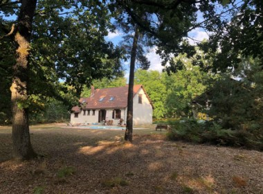 propriete_chasse_agrement_sologne_souesmes_dannaud_immobilier (1)